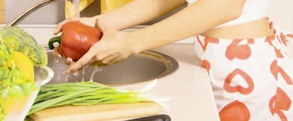 dieta-perrico_article-main-image