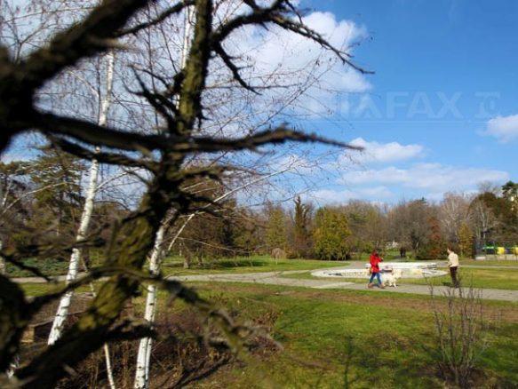 primavara-parc-sebastian-tataru